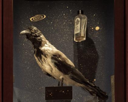 Amore, musei, ispirazioni. Il Museo dell'innocenza di Orhan Pamuk a Milano